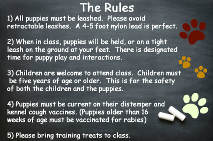 Puppy Class Rules